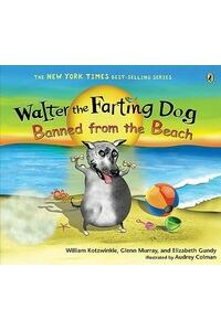 Banned from the Beach