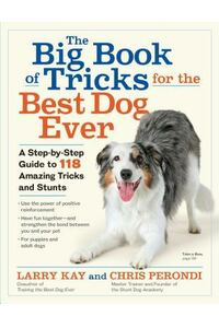 Tricks and Stunts for the Best Dog Ever